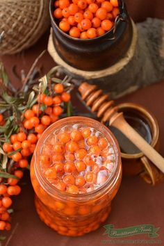 Catina cu Miere Medicinal Herbs, Canning Recipes, Chana Masala, Preserves, Health And Beauty, Food And Drink, Health Fitness, Fish, Homemade