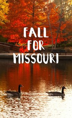 Find some peace this fall in Missouri//