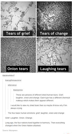 I saw it and thought no joke but onions don't cry