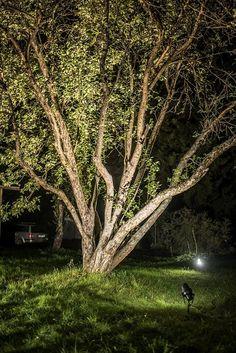 Airam_elokuu2015_054 - OneDrive Pathways, Outdoor Lighting, Terrace, Garden, Plants, Balcony, Garten, Patio, Paths