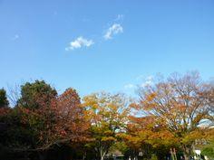 「Kawaguchi green center 」 Kawaguchi Saitama Japan