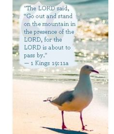 1 KINGS scripture of faith and encouragement. Spiritually inspiring Bible verse to remind us to enjoy God's presence and blessings! Scripture Verses, Bible Scriptures, Bible Quotes, I Choose Life, Kings Of Israel, 1 Kings, Everlasting Life, Praise And Worship, Spiritual Inspiration