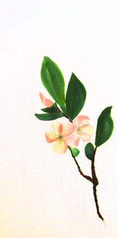 Membrillo. 2014. Sumi-e sobre seda  en soporte rígido de 40 x 20 cm. Alesso, Plants, Antique China, Silk, Art, Plant, Planets