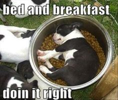 Bead and breakfast done right