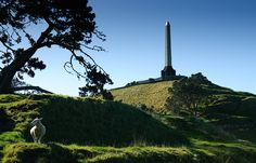 One Tree Hill is one of the largest of the 52 volcanoes in the Auckland Volcanic Field.