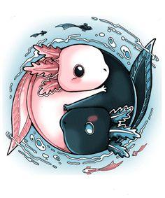 Axolotl jing and jang