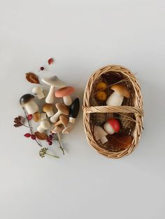 This perfect little basket is meant for forest adventures. Hide the mushrooms and send your little one out to rediscover them, along with any other treasures they might find. -DETAILS- 15 solid beechwood mushrooms rattan basket Made in Germany Diy Sensory Board, Deco Champetre, Natural Toys, Interactive Toys, Rattan Basket, Wood Toys, Wooden Baby Toys, Wooden Toys For Toddlers, Infant Activities