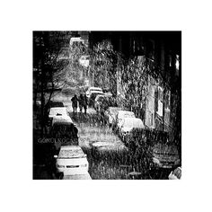 Black and White Photography  Winter photography Snow by gonulk