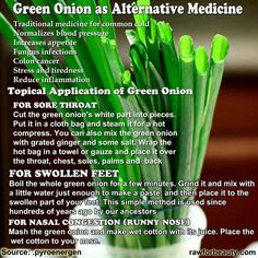 Health Benefits of Green Onion