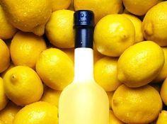 Как приготовить настоящее итальянское лимончелло (Limoncello) в домашних условиях? Рецепт с фото | Венецианская сказка