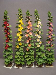 what colors are the hollyhocks | Plansts and Flowers - for Dollhouse Landscaping