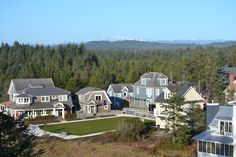 Newly completed West Hill Park in Seabrook, WA.  Park designer:  Stephen Poulakos