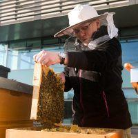 rozrabianie spirytusu na nalewki - UleUli.pl Cowboy Hats