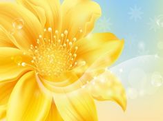 Golden flower. Delicate background.