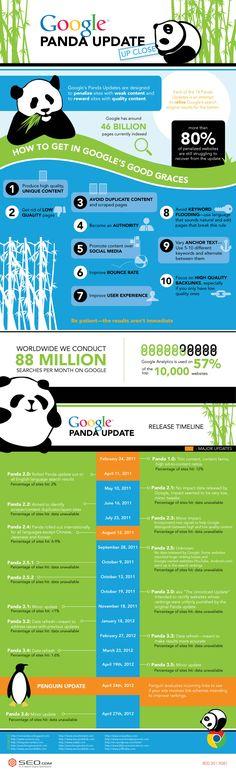 Quand il n'a plus de bambous, Google Panda dévore le trafic des sites en infraction. Historique et recommandations dans cette infographie seo.com