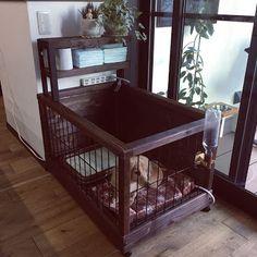 「犬の理想的なケージ」の画像検索結果