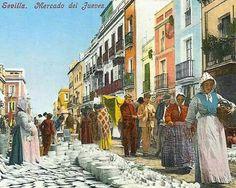 Mercado del jueves.  Sevilla