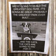OMG hahaha  #yycdogs #dogpark #borderpatrol #bordercollie #buildthewall #wall #cats
