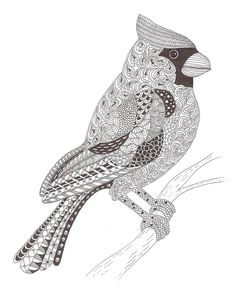 Cardinals, Branches and Stockings on Pinterest