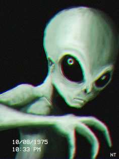 Extraterrestre Les Aliens, Aliens And Ufos, Ancient Aliens, Aliens History, Alien Gris, Grey Alien, Alien Alien, Alien Tattoo, Alien Pictures