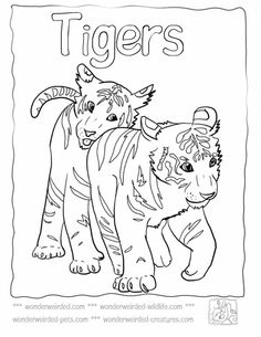 Baby Tiger Coloring Pages at www.wonderweirded-wildlife.com/baby-tiger-coloring-pages.html ,Echos Cute Tiger Coloring Pages For Kids, From Baby Tiger Cubs Pictures to Mother and baby Tiger Pictures to color, Tiger Coloring Pages, Free to Download