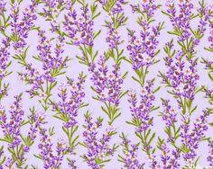 Rosemary Flowers - Lt Lavender