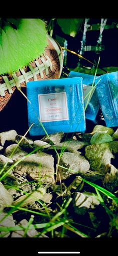 Hard To Find, New Product, Fragrance, Herbs, Products, Herb, Perfume, Gadget, Medicinal Plants