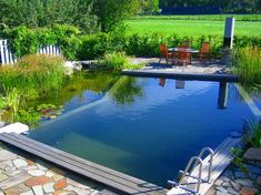 How much can a swimming pond cost? - House decoration more - How much can a swimming pond cost? does it cost pond - Swimming Pool Landscaping, Natural Swimming Pools, Pond Landscaping, Swimming Pool Designs, Costa, Underwater Plants, Japanese Water, Natural Pond, Angeles