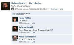 Hagrid cuttin' through the BS: