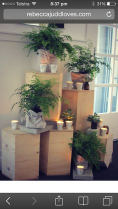 love the plinths and greenery