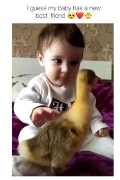 Cute Funny Baby Videos, Cute Funny Babies, Funny Baby Memes, Funny Videos For Kids, Cute Animal Videos, Cute Funny Animals, Cute Baby Animals, Funny Kids, Funny Cute