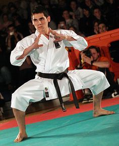 Karate Kata (Forms)....ready to learn more