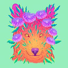 Colorful Endangered Animals Illustrations – Fubiz Media