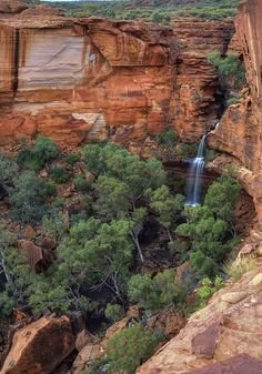 Kings Canyon &  Watarrka National Park, NT (Australia). Central Australia's lesser-known  geological feature.