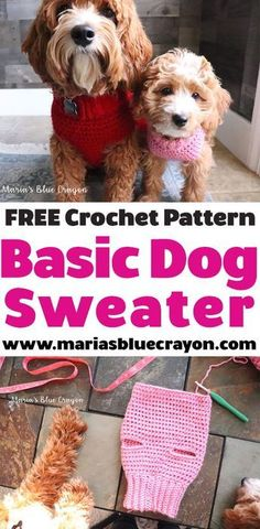Easy free crochet dog sweater pattern for all dog sizes. Easy free crochet dog sweater pattern for all dog sizes.Keep scrolling for the Free Crochet Dog Sweater Tutorial I never thought I would be making my dogs crochet sweaters, but here I am! Crochet Dog Sweater Free Pattern, Knit Dog Sweater, Crochet Sweaters, Sweater Patterns, Free Easy Crochet Patterns, Dog Coat Pattern, Easy Patterns, All Free Crochet, Chat Crochet