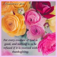 1 Timohy 4:4 KJV