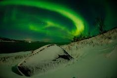 Reindeer Sleigh in Tromso area - Fjord Travel Norway Tromso, Northern Lights Trips, Norway In A Nutshell, Arctic Landscape, Ice Hotel, Domestic Flights, Adventure Travel, Tours, Safari