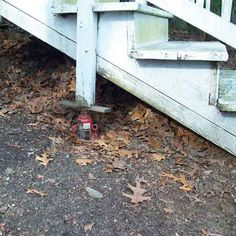 No words...a bottle jack supporting the stairs in TOH: Home Inspection Nightmares