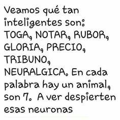 Activen las neuronas