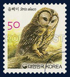 Definitive Postage Stamp, Eurasian Tawny Owl, Bird, Ivory, Brown, 2005 09 01, 보통우표 2005년 9월 1일, 2452, 올빼미, postage 우표