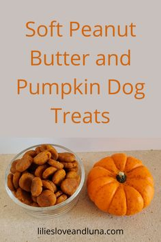 Easy to make 3 ingredient dog treats. These peanut butter and pumpkin dog treats are great for dog training. Soft Dog Treats, Best Treats For Dogs, Puppy Treats, Homemade Dog Treats, Food For Dogs, Dog Treat Recipes, Dog Food Recipes, 3 Ingredient Dog Treats, Dog Popsicles