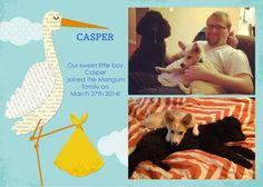 Casper has found his new forever family!