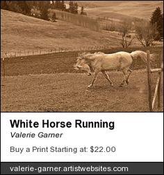 White #Horse Running #Sepia #vintage fine #art #prints