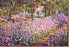 The Artist's Garden at Giverny, c.1900 Stretched Canvas Print