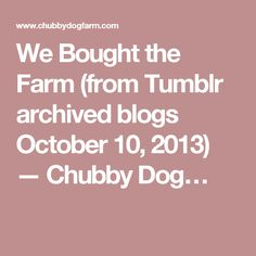 We Bought the Farm (from Tumblr archived blogs October 10, 2013) — Chubby Dog… October 10, Tumblr, Dogs, Stuff To Buy, Doggies, Pet Dogs, Dog