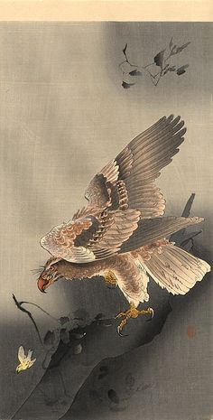 Ohara Koson (小原 古邨, 1877-1945) Swooping Eagle c. 1910