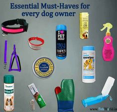 10 Pet Products every dog owner must have! #petcare #petsworld