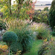 Profiter de la vue derrière le jardin<br />F. Marre - Rustica - Le petit clos
