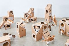 This modular cat furniture is made from cardboard boxes - Curbed