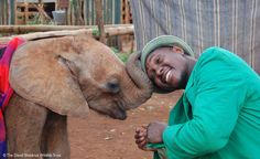 This Photo of Orphan Elephant and Loving Caretaker Will Make You Rethink What Defines Family
